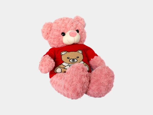 gau teddy xoan hong ao len do 1 scaled