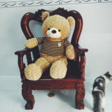 Gấu bông teddy 1M