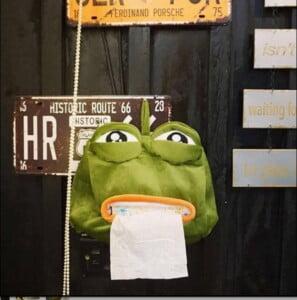 Hộp giấy ếch cọc cằn