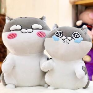Mèo Ami siêu cấp đáng yêu