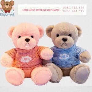 Gấu bông teddy size nhí